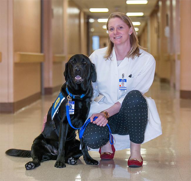 service animal hospice NYC